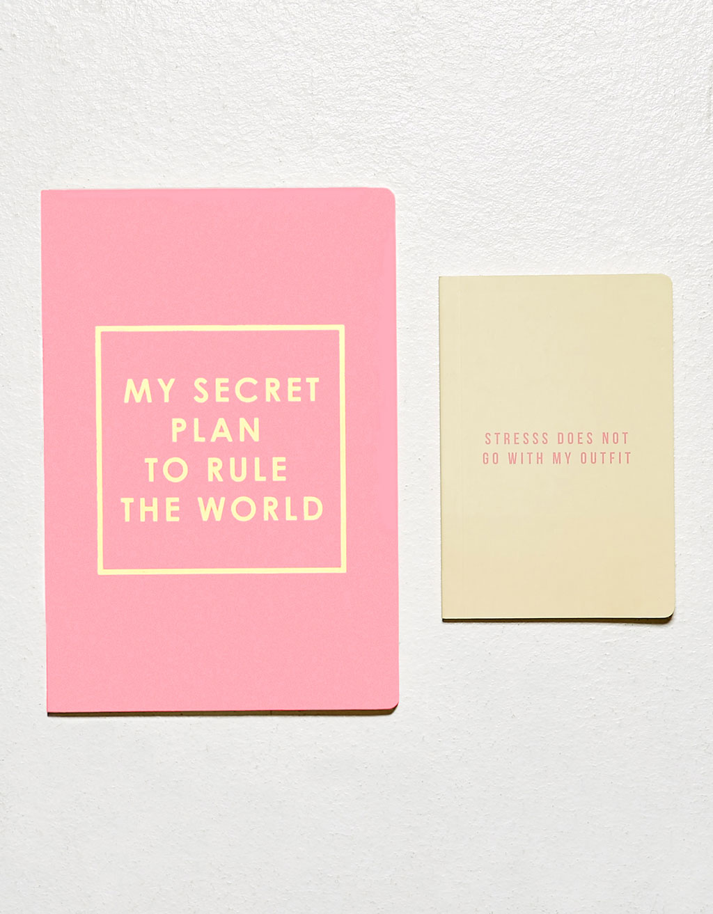 'My secret plan' notebook set