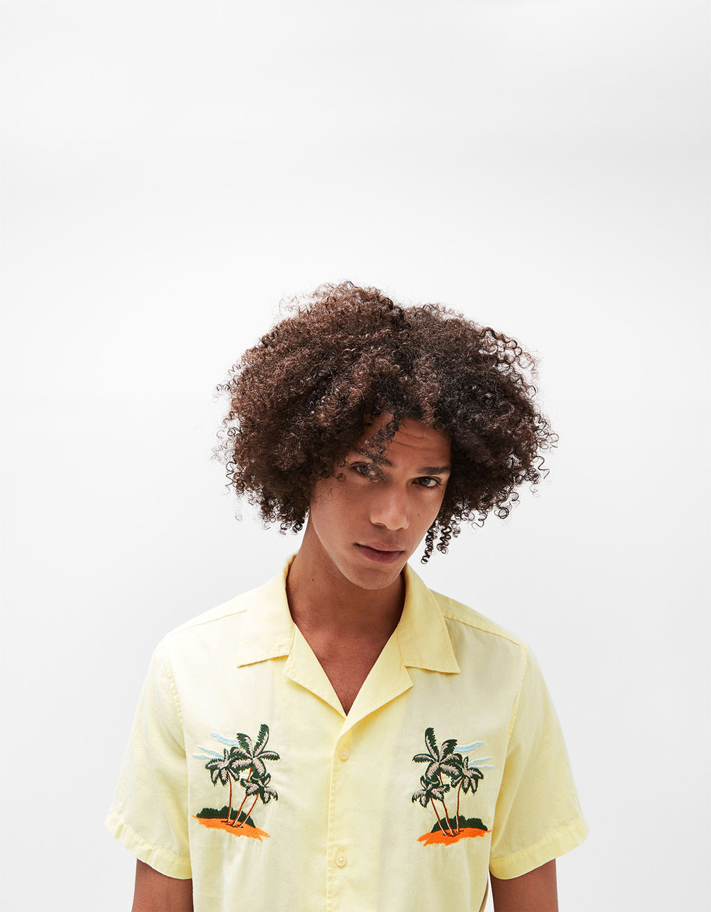 Short sleeve shirt with embroidered palm trees